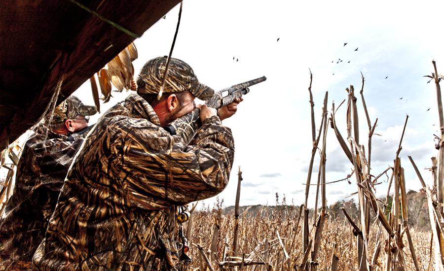 Carolina Hunting Preserves