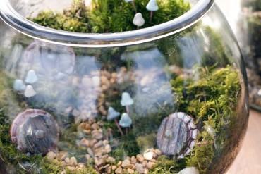 A moss terrarium by Gypsy Raku