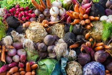 charlotte-farmers-markets