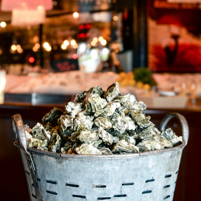 Inland Shuckin': Charlotte's Best Oysters