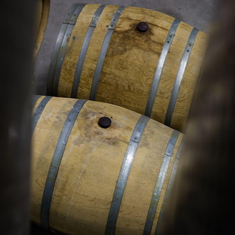 Wineries Of The Carolina