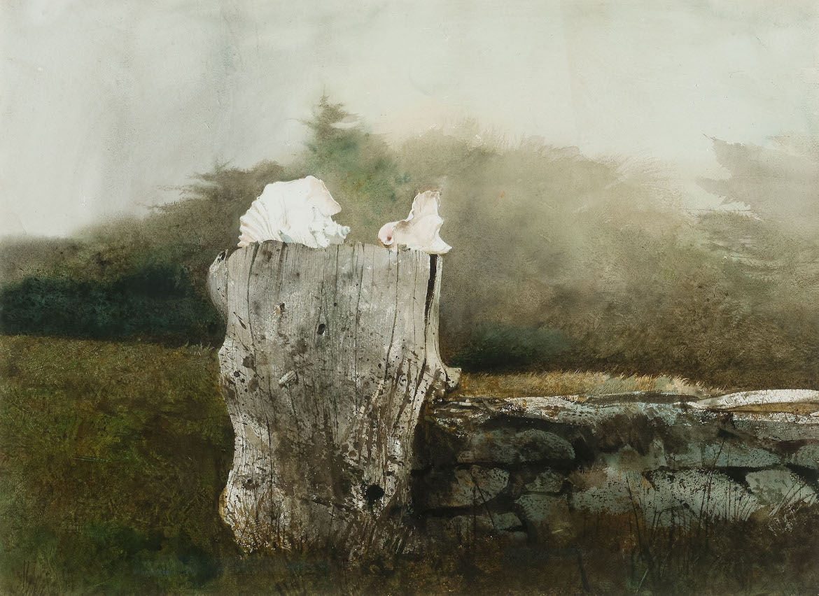 Andrew Wyeth's Whale Bone