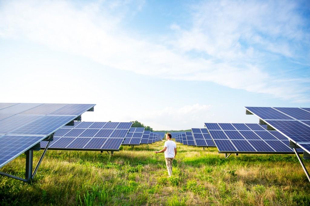 Sun-Raised Farms