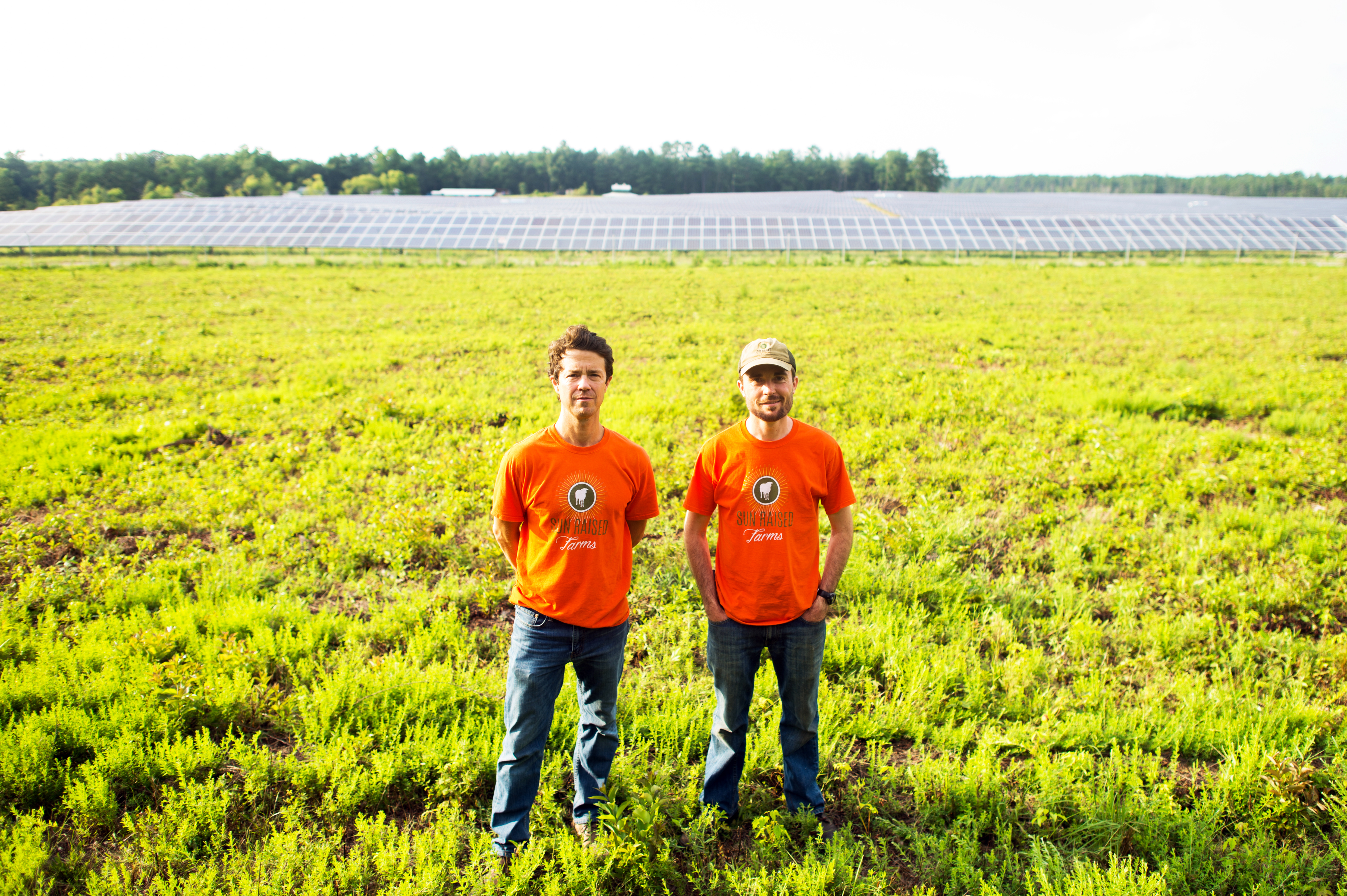 Sun Raised Farms Is Changing The Sustainability Movement