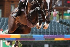 World Equestrian Games Tryon