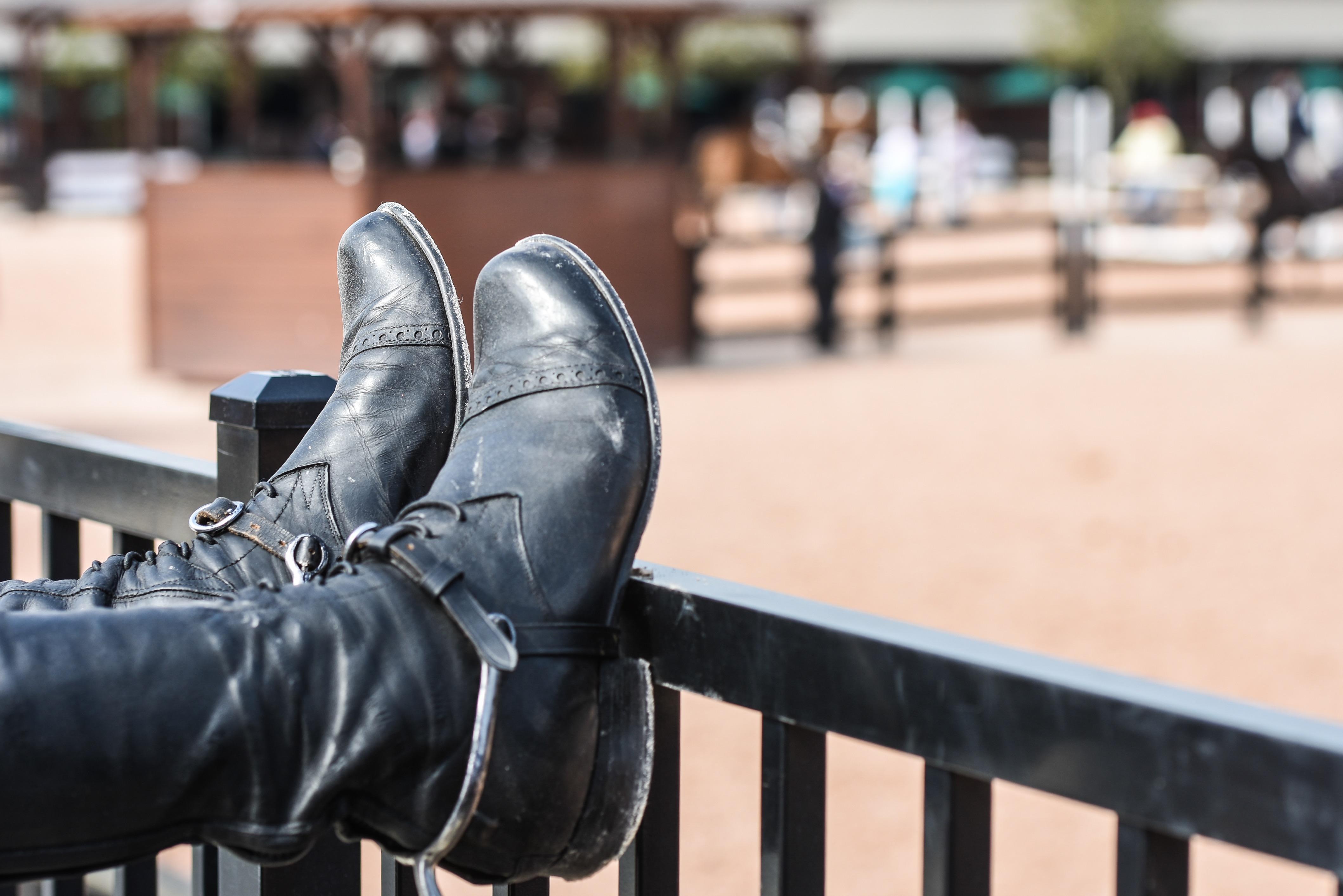 World Equestrian Games Tryon
