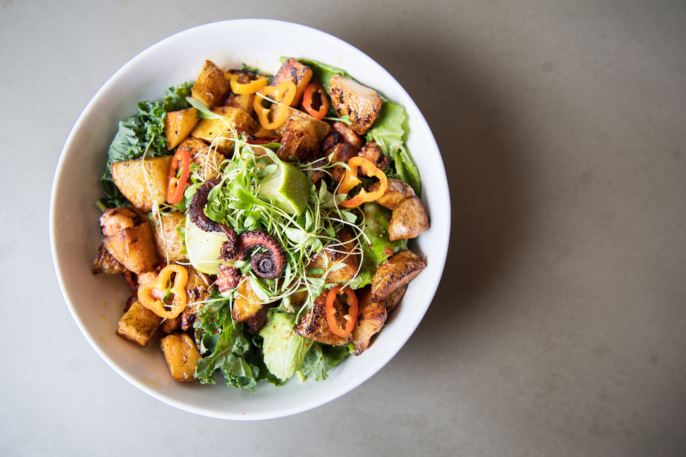 health bowl